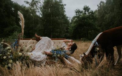 """Sesja z Alpakami wyróżniona na """"Ślub z Wedding"""""""